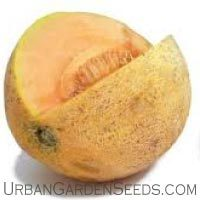 Heart of Gold Cantaloupe Seeds