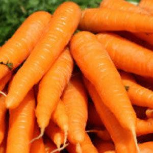 Finger Carrot Seeds