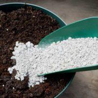 Pumice & Soil