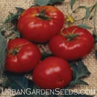 Brandywine Red Tomato Seeds