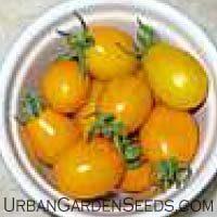 Yellow Plum Tomato Seeds