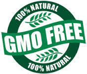 Say No to GMOs